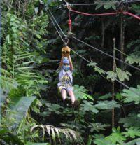 Puentes y Zip Lines en Yunque Rainforest Corcovado